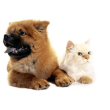 Pets Megastore Australia coupons