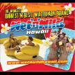 Wet 'N Wild Hawaii coupons