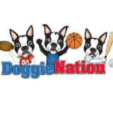 DoggieNation coupons