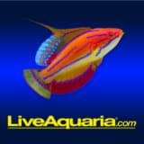 Liveaquaria.com coupons