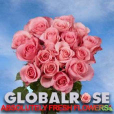 Globalrose coupons