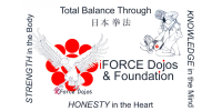 AIJO Nippon Kenpo Foundation (iForce Dojos)