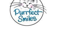 Purrfect Smiles